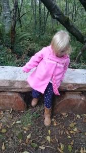 Pink Michelle Jacket 1