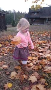 Merlot tweed swingset skirt, 8