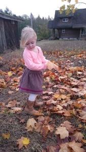 Merlot tweed swingset skirt, 9