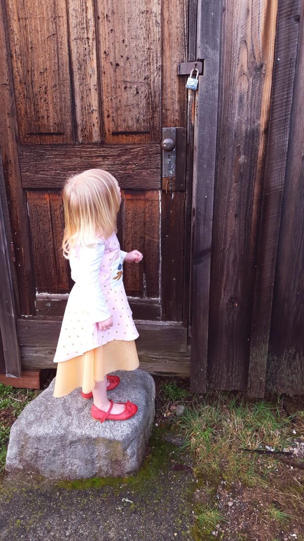 Princess Kitty Dress, 5