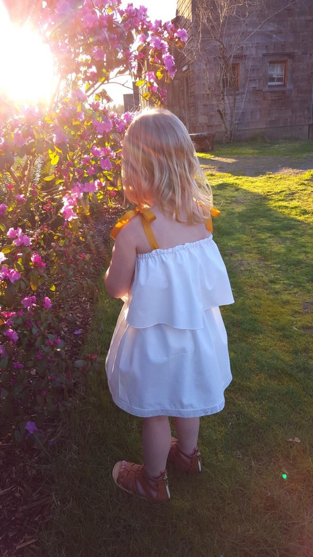 Blue Bird Pillowcase Dress, 2