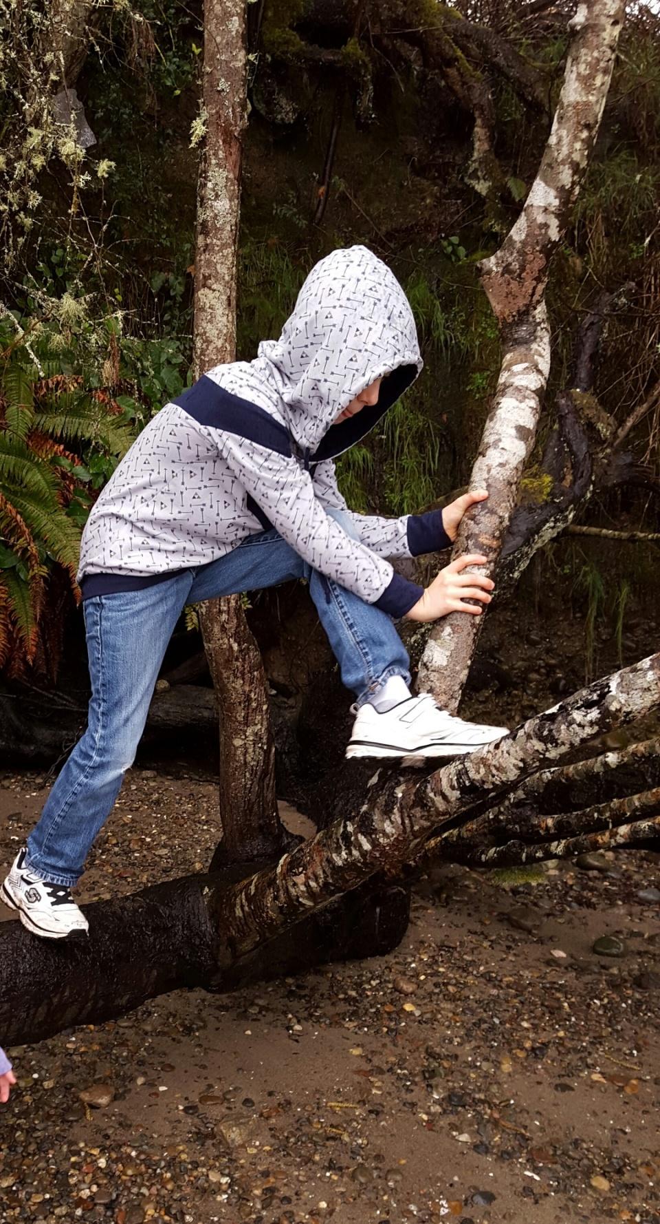Elevation hoodie, 13