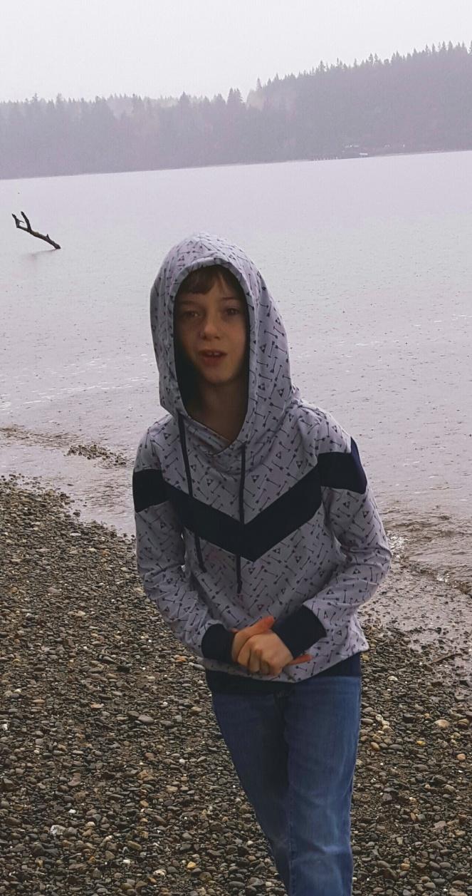 Elevation hoodie, 2