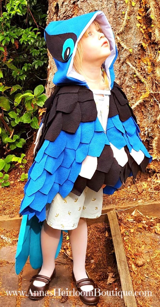 blue-bird-cape-3