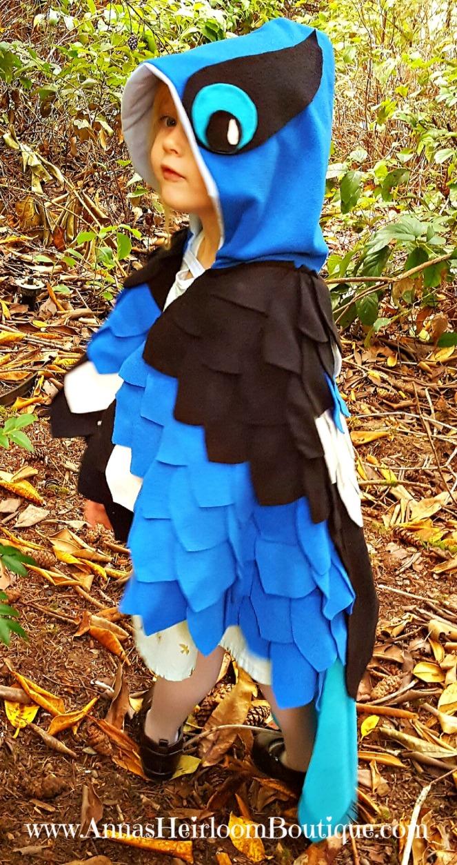 blue-bird-cape-7