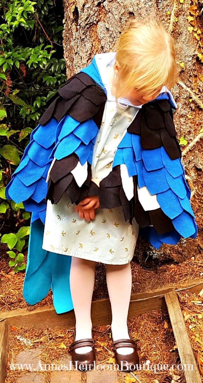 blue-bird-cape-9